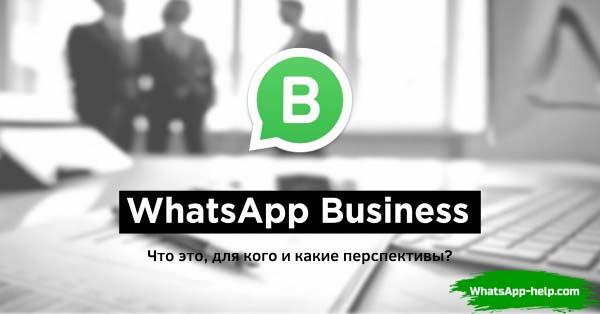 Что такое Ватсап Бизнес
